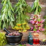 Травяные сборы, чай, семена